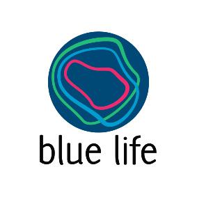blue life 283x283